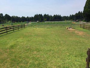 the farm camp ザファームキャンプ site