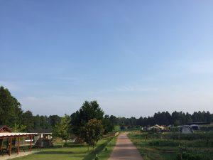 the farm camp ザファームキャンプ
