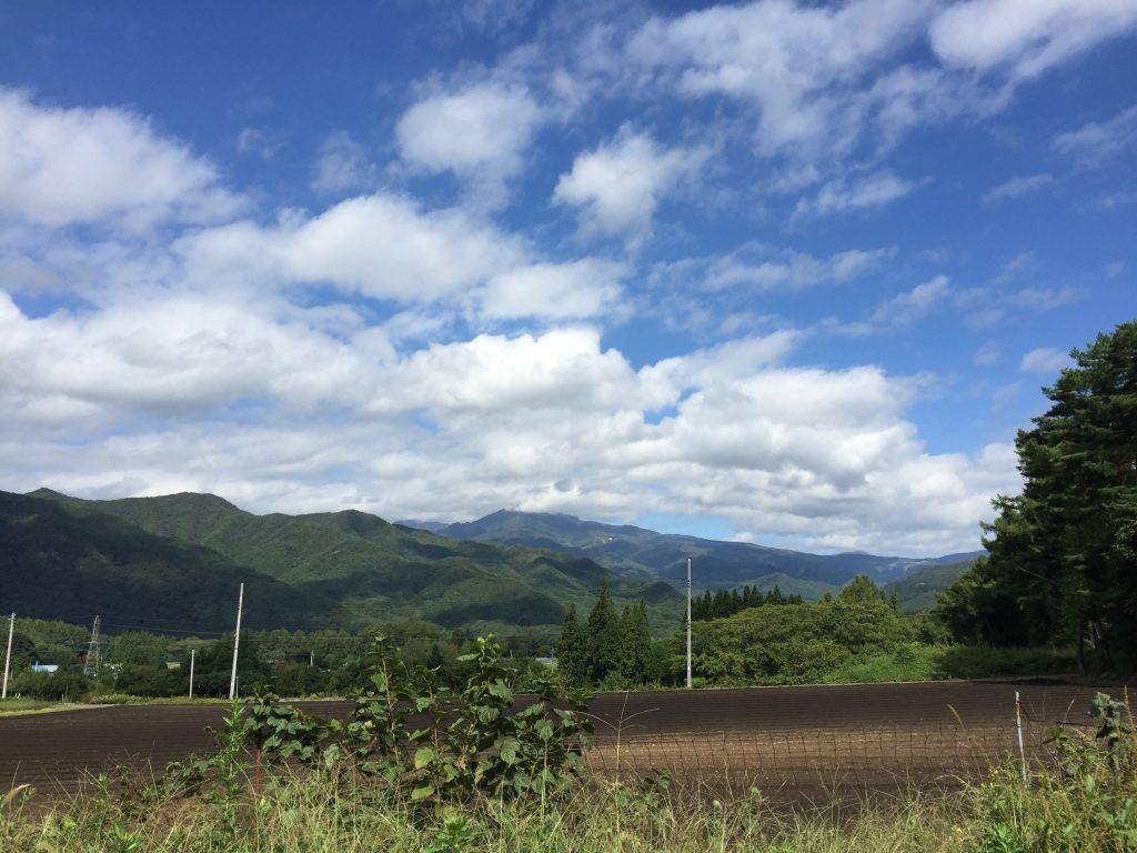 皇海山キャンプフォレスト フリーサイト