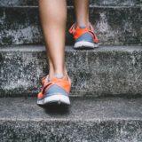 東京マラソン トレーニング記録