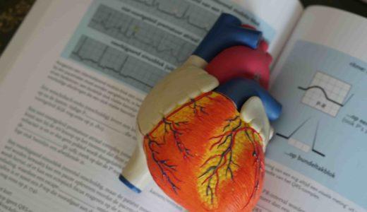 第6回(2020年度)心電図検定の実施要項が更新され試験の日程が公開されました。